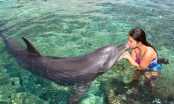 cartagena-colombia-family-vacation-adventure-tours